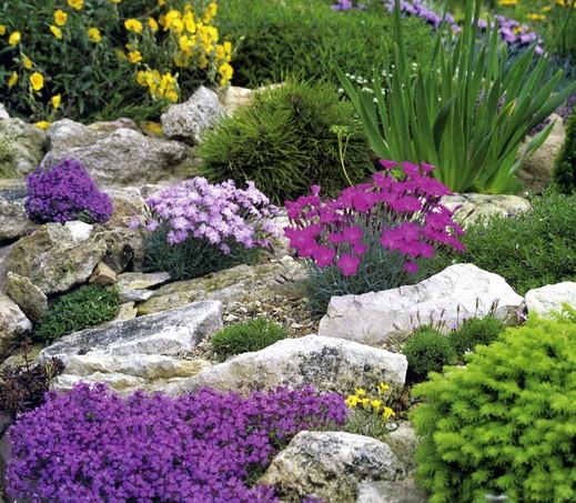 Флора-Парк – ландшафтний дизайн, благоустрій, озеленення.