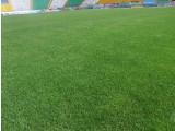 Газони посівні. Створюємо газони як на присадибних ділянках, так і футбольні поля.