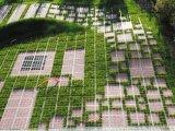 Фото  2 Георешетка ТТЕ: ландшафтный дизайн, озеленение 2022877