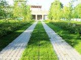 Фото  3 Брусчатка ТТЕ для газонной решетки под экопарковку 2023878