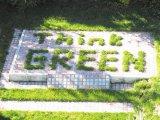 Фото  5 Георешетка ТТЕ: ландшафтный дизайн, озеленение 2025877