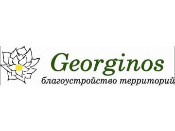 Georginos