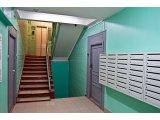 Фото 1 Ремонт подъездов домов многоэтажных, покраска побелка стен панелей 343234