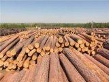 Фото 1 Лесопродукция лес по самым выгодным ценам в Краматорске 306825