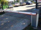 Фото  8 Гаражні ворота Тернопіль та область 2343888