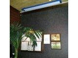 Фото  2 Потолочный длинноволновой электрический инфракрасный обогреватель, тепловая завеса, + в теплицы, EKOSTAR Е600 220478