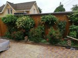 Фото 2 Фасадный металличкеский сайдинг , сайдинг на забор 341942