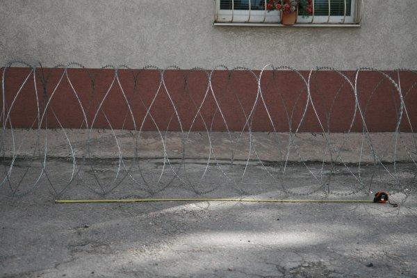 Фото  1 Егоза Казачка 900/5 2150344