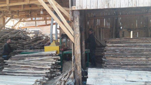 Фото 6 Пиломатеріали в Харкові і області. Кругляк, Брус, Дошка, шалівка, дрова 337652