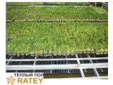 Фото  6 Теплый пол RATEY нагревательная инфракрасная пленка электрическая под ковролин, ламинат, паркет, маты SH 0,5м (660 Вт/м) 2369048