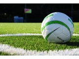 Фото  5 Искусственная трава DOMO Slide DS 40M/53 для мини футбола 5959475