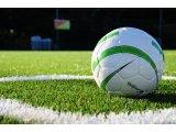 Фото  7 Искусственная трава DOMO Slide DS 50M/73 для больших футбольных полей, искусственное покрытие для футбольного поля 7979470