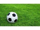 Фото  5 Искусственная трава DOMO Slide DS 50M/53 для больших футбольных полей, искусственное покрытие для футбольного поля 5959470