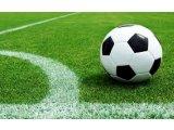 Фото  5 Искусственная трава DOMO Slide DS 60M/53 для больших футбольных полей, искусственный газон для футбола 5959469