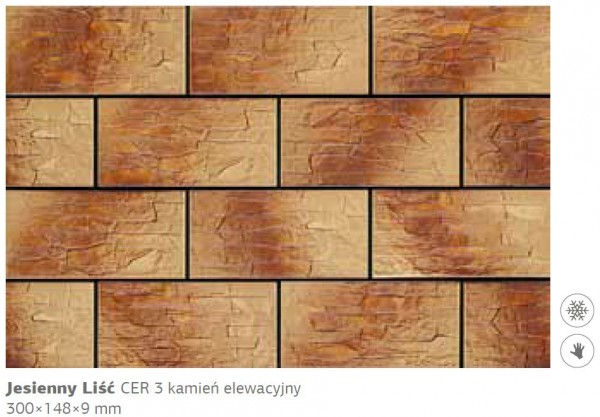 Камень фасадный Cer 3 300х148х9