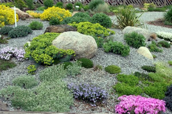 Камянистий сад (альпінарій, рокарій, альпійська гірка, японський сад)