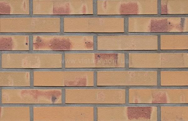 Керамический клинкерный кирпич: Dresden, формат: DF