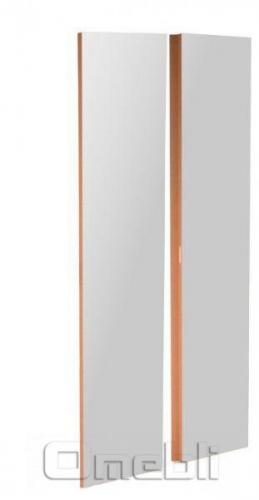 Комплект дверей UK-31 ДСП с зеркалом   зебрано A10221