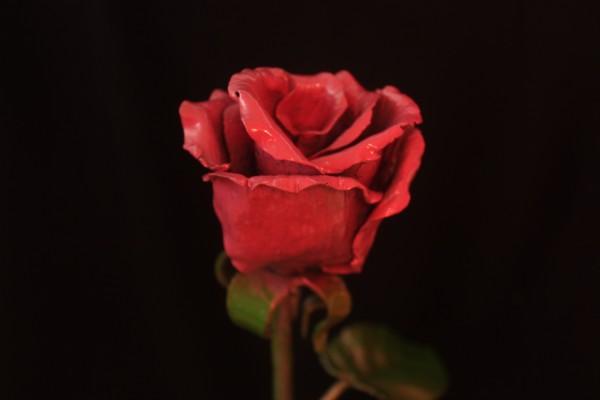 кованые стальные розы в днепропетровске