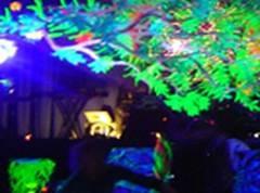 Краска для цветов флуоресцентная (1 л. )