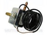 Фото  1 Купить 020025285 Термостат Protherm 2024003