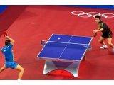 Фото  1 Спортивный линолеум для настольного тенниса TENNIS DE TABLE (Франция) 2138829