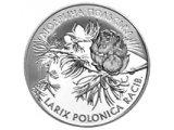 Фото  1 Лиственница польская серебро монета 10 грн 2001 1973111