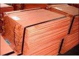 Фото  6 Медный лист 0,55х6000х2000. мягкий ДПРНМ,полутвердый ДПРНП,твердый ДПРНТ 2067663