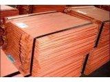 Фото  6 Медный лист 60х600х6500. лист мягкий ДПРНМ,полутвердый ДПРНП,твердый ДПРНТ 2067676