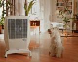 Мобильные охладитель воздуха Convair Mastercool