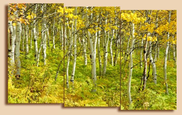 """Модульная картина на холсте """"Ранняя осень"""""""