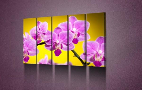 """Модульная картина """"Орхидея на желтом фоне"""" - 800,00 грн"""