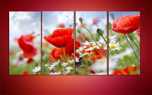 """Модульная картина """"Поле цветов. Маки"""" - 650,00 грн"""