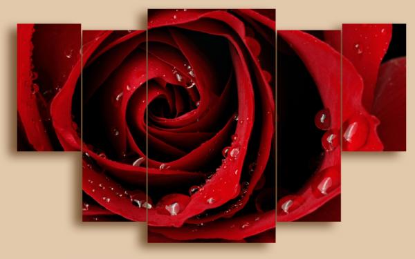 """Модульная картина. Холст. """"Роза"""" 1200,00 грн"""
