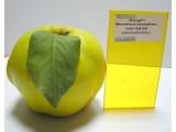 Монолитный ударопрочный поликарбонат 10 мм, цветной, ТМ Monogal