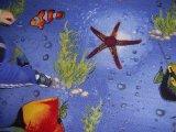 Фото  10 Морской детский ковер Море 21034442