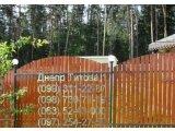 Фото  1 НОВИНКА Профнастил под дерево 1762430