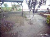 Фото 6 Озеленение Планировка Рулонный газон Укладка Борисполь район 342908
