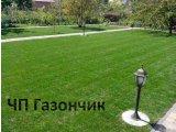 Фото 4 Озеленение Планировка Рулонный газон Укладка Борисполь район 342908
