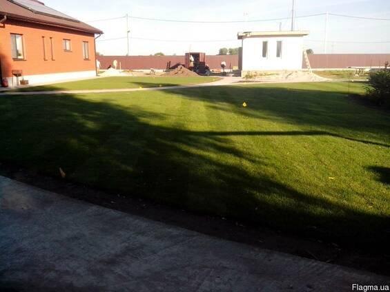 Фото 5 Озеленение Планировка Рулонный газон Укладка Борисполь район 342908