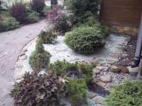 озеленение Вашего сада
