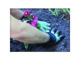 Фото  2 Перчатки с когтями Garden Gloves 2079772