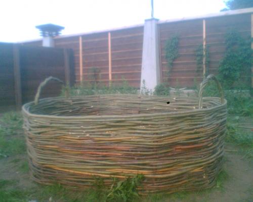 плетение с дерева. ландшафтный дизайн