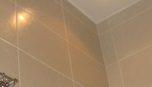 плиточные работы любой сложности,укладка плитки и мозаики на пол,на стены,отделка фризом,отделка фасада плиткой.