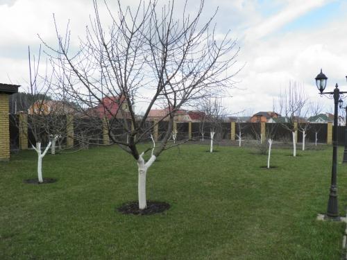 полив Вашего сада, учитывая угловые наклоны