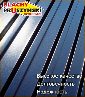 Профнастил «Прушиньски» 0,45мм Т20 РЕ