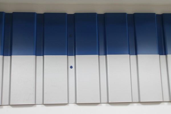 Профнастил: ПС 10 толщина 0.28; покрытие ПЭК; 920 ширина;