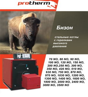 Protherm (Протерм) Бизон 60 NL, 59,70 кВт, дымоход