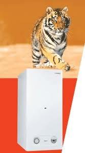 Protherm (Протерм) Тигр 24 KOZ, 24 кВт, дымоход, отопление помещений и приготовление горячей воды