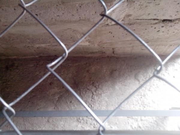 Рабица ячейка 35*35, д. проволоки 2,0мм. , высота 1,5м.